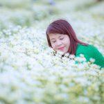 5 địa điểm chụp cúc họa mi Hà Nội đẹp tinh khôi